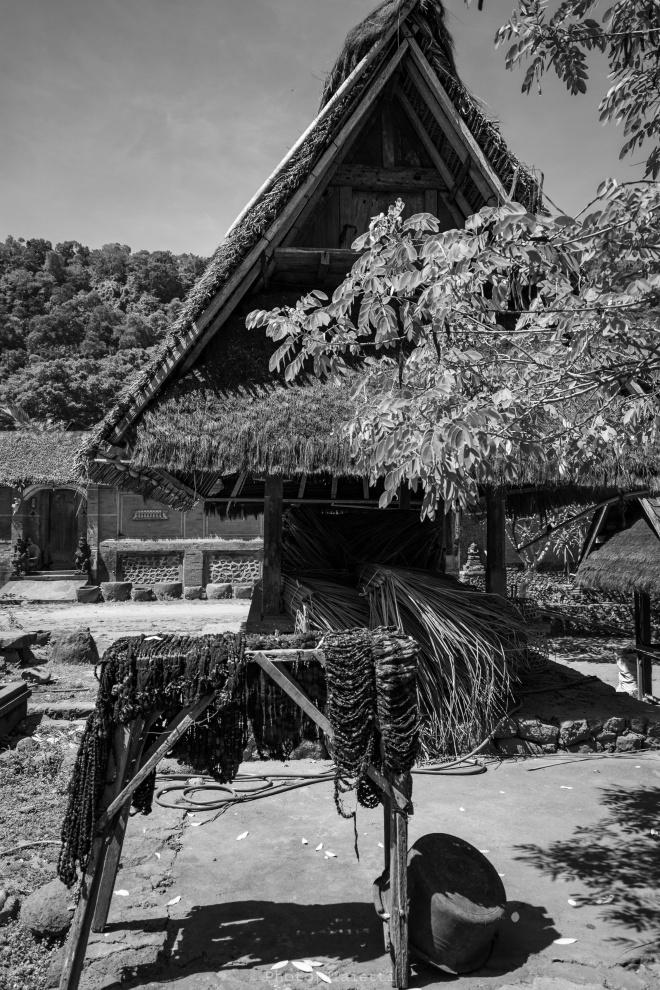 Bali - Villaggio Tenganan