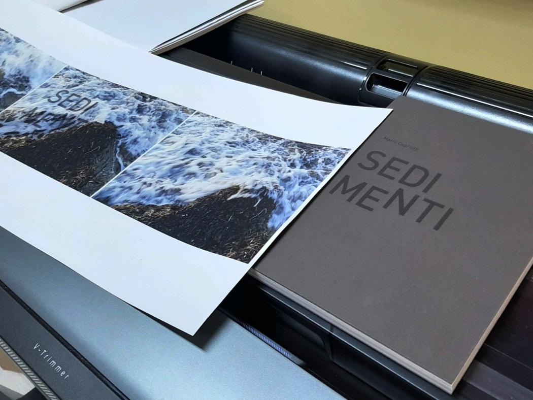 Dettaglio interno pubblicazione Sedimenti di Mario Capriotti